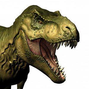 https://www.publicdomainpictures.net/nl/view-image.php?image=291901&picture=bruin-t-rex